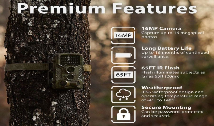 REXING Woodlens H1 HD 16MP Trail Game Camera Review