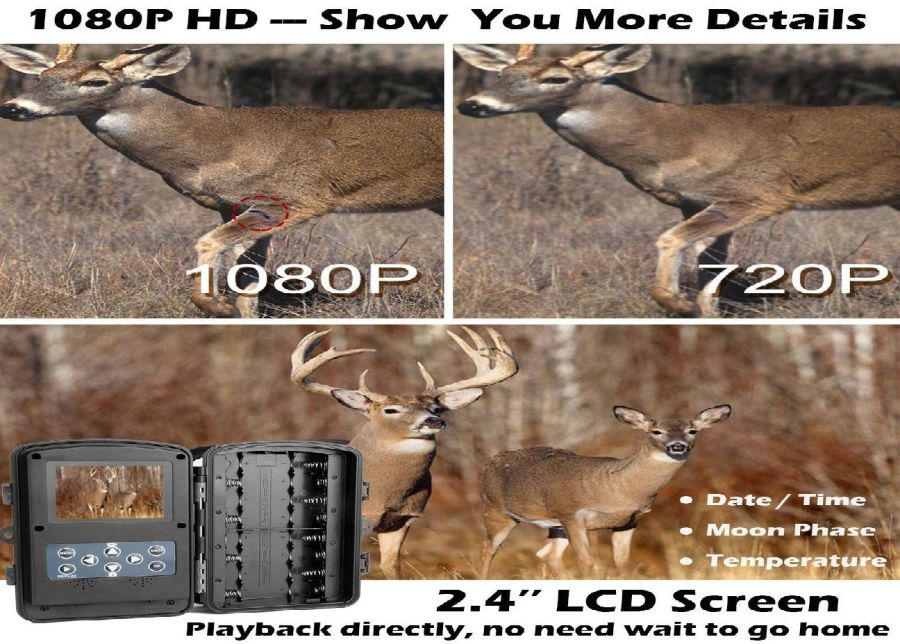 X-Launger Game Trail Game Camera Review
