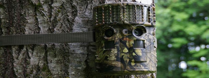 """Trail Camera Advantages """"The All Uses And Advantages Of Trail Cam"""""""