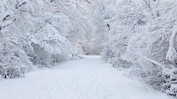 Snow. Image by Crossvillenews.