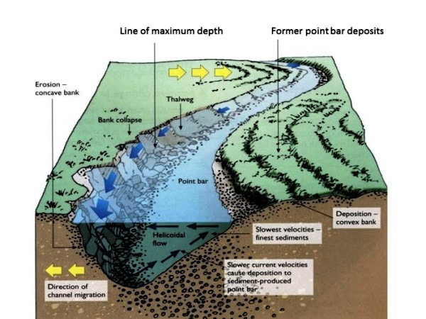 Meander migration. Image credit wordpress.com