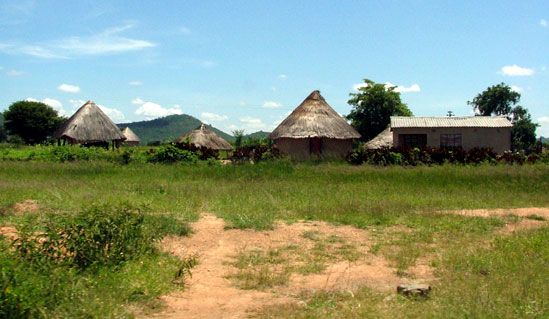 A typical rural compound. Image credit techzim.co.zw