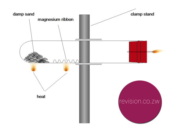 Magnesium reacts with steam