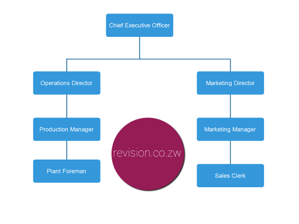 An example of a tall organisational structure.