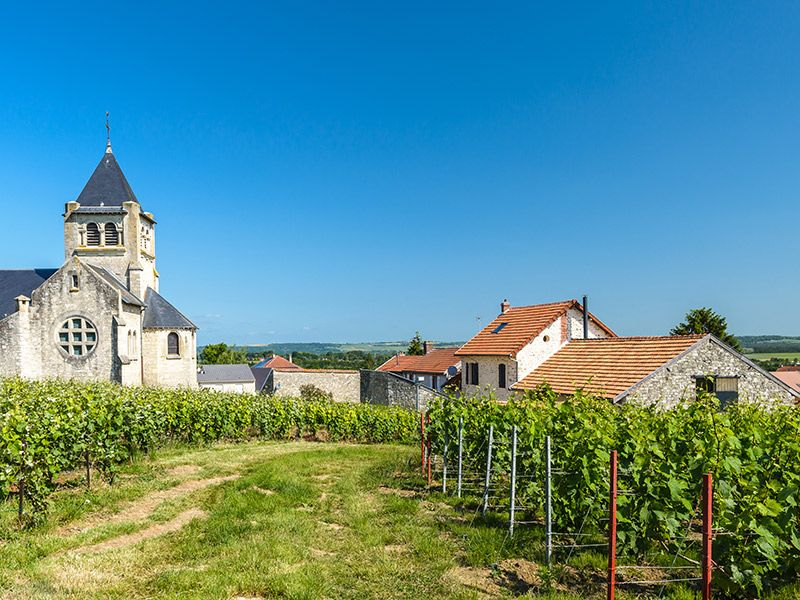 Destination wedding na Europa França Champagne