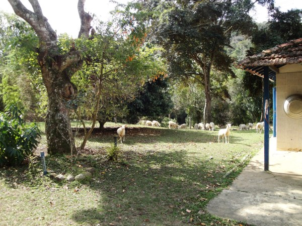 Cabanha Mirabeau