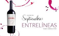 Entrelíneas, el vino del mes de santa elena en Maria Orsini el arte del buen vivir