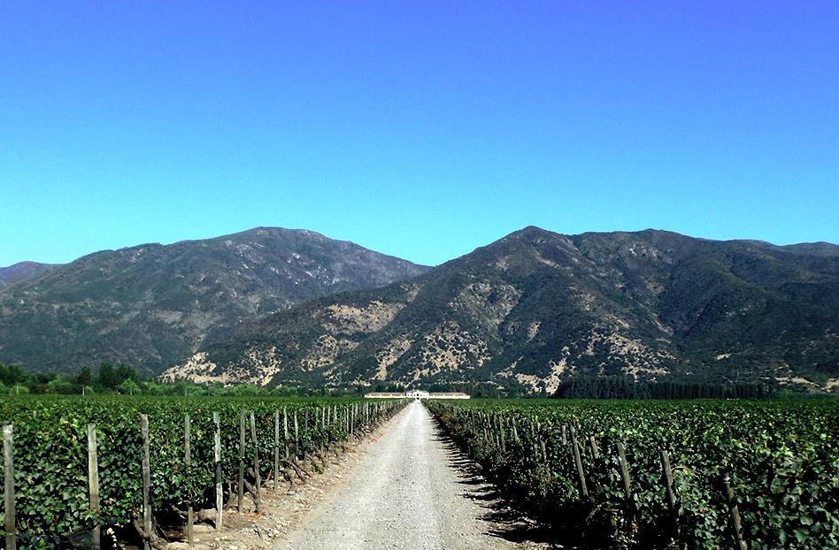 valle de colchagua, trenes de vino