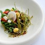 Restaurante Raíz: tlacoyos, quelites, gaznates….