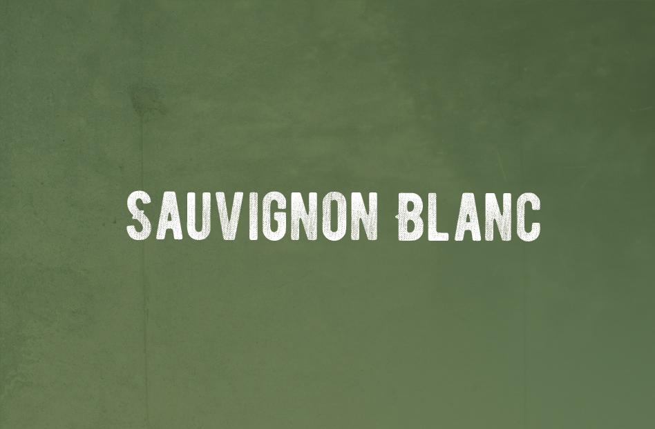 Conoce esta uva: Sauvignon Blanc