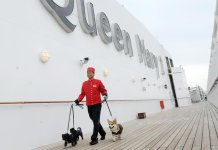 Conoce los cruceros que son pet friendly