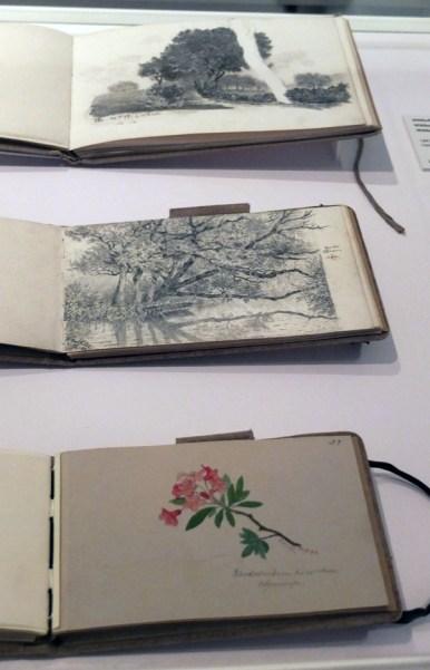 Cuadernos de trabajo de Paul Klee.