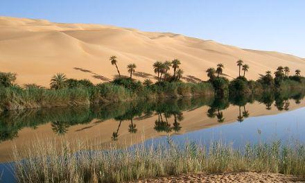 Danza en medio del desierto