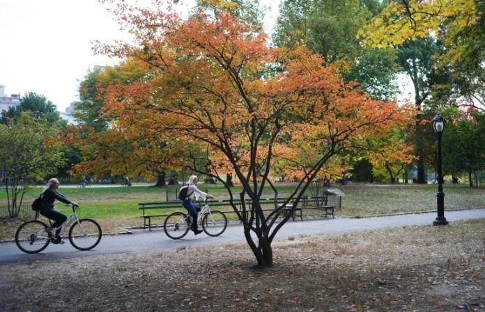 Duas pessoas pedalam no Central Park em Nova York.