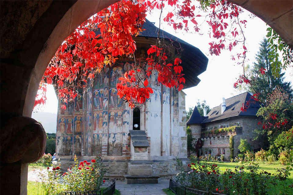 Flori de mătase la Moldovița