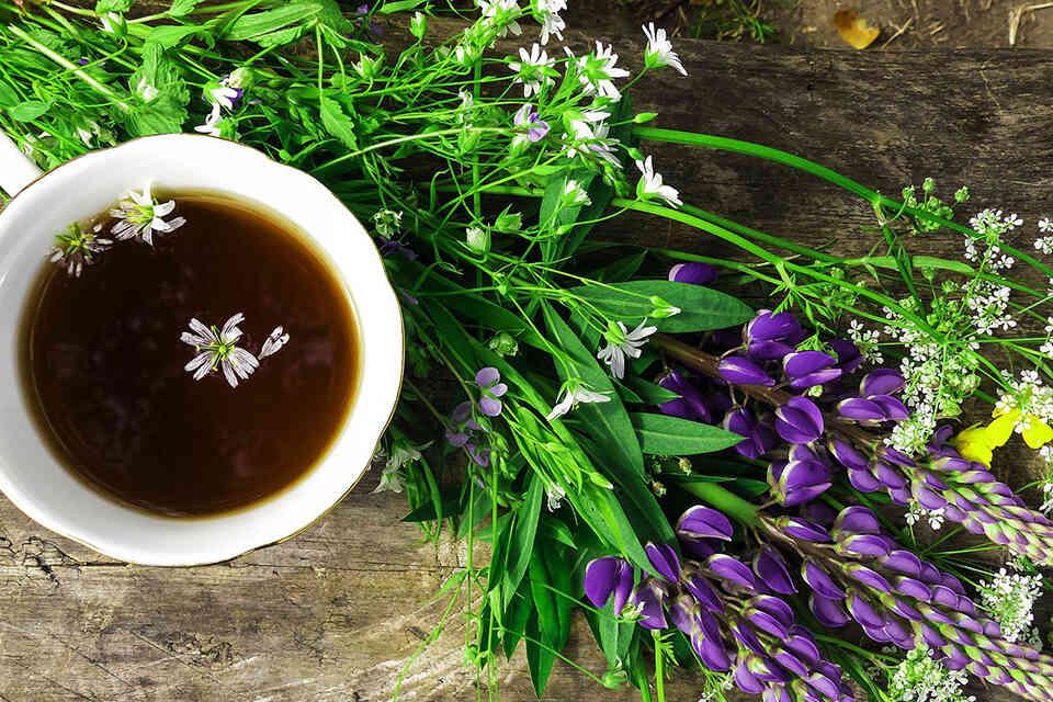 Gripa stomacală: simptome, tratament, regim alimentar