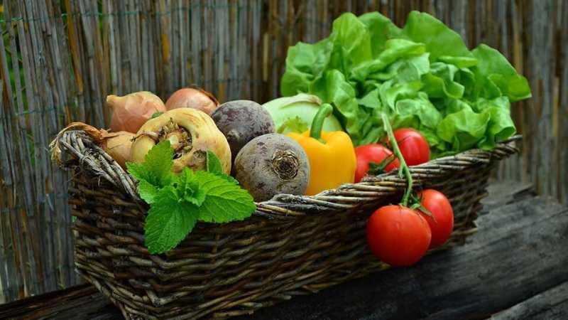 alimentele-organice