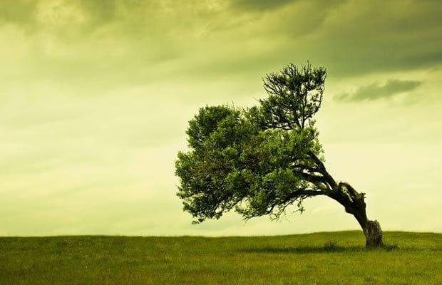 Elogio da solidão que nos une e nos separa