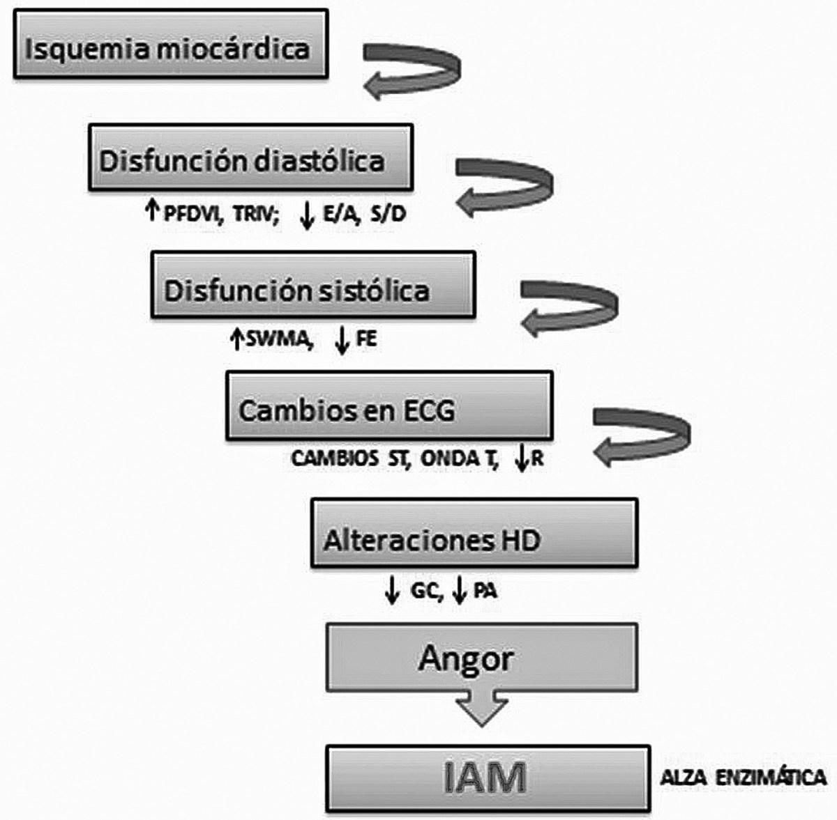 La hipertensión causa la inversión de la onda t