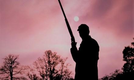 """El tempus fugit en la novela """"Los disparos del cazador"""" de Rafael Chirbes: del presente al pasado y viceversa"""