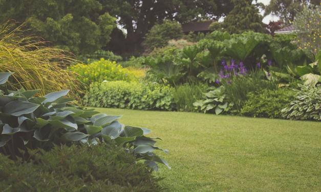 """""""Loa a la tierra. Un viaje al jardín"""". Un lugar romántico"""