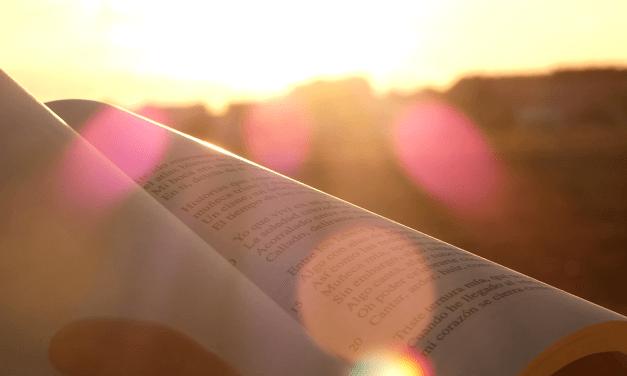 """Leer, ¿pa qué? """"Manifiesto por la lectura"""", de Irene Vallejo"""