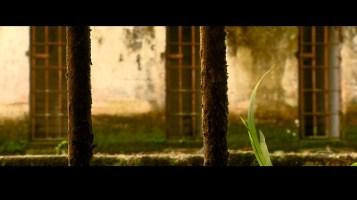 Gorgona, historias fugadas'