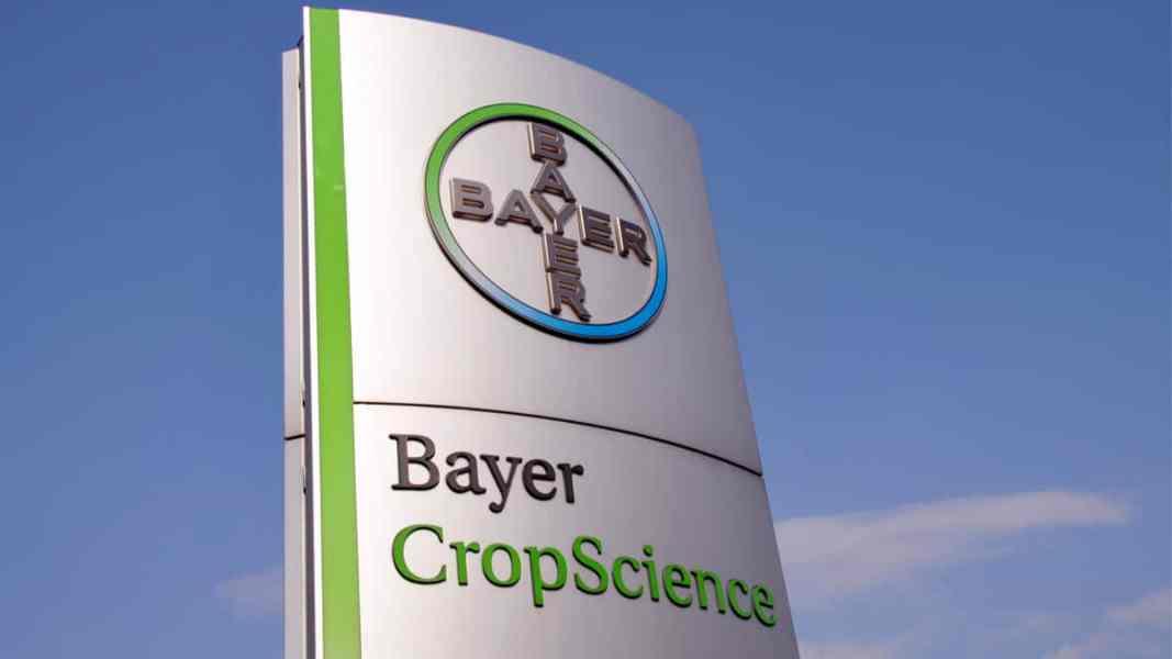 A Bayer foi premiada como uma das 100 empresas mais engajadas com inovação aberta no Brasil.