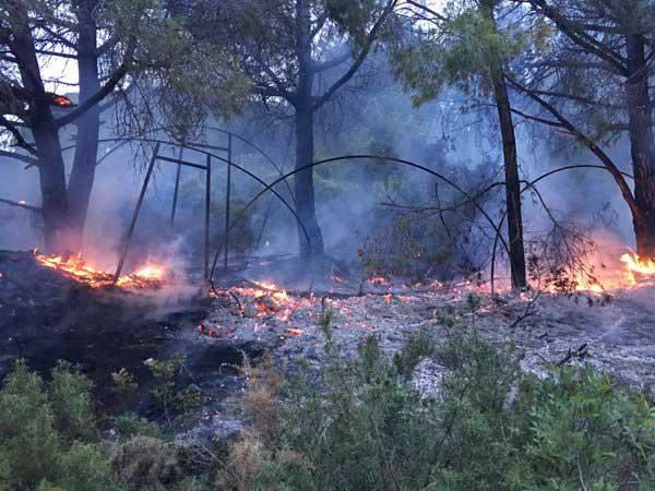 Imágenes del incendio. Foto: policía Local de Malgrat de Mar
