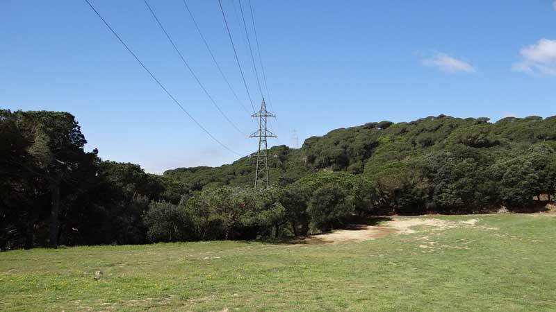 La línea de alta tensión que pasa por el interior del parque natural