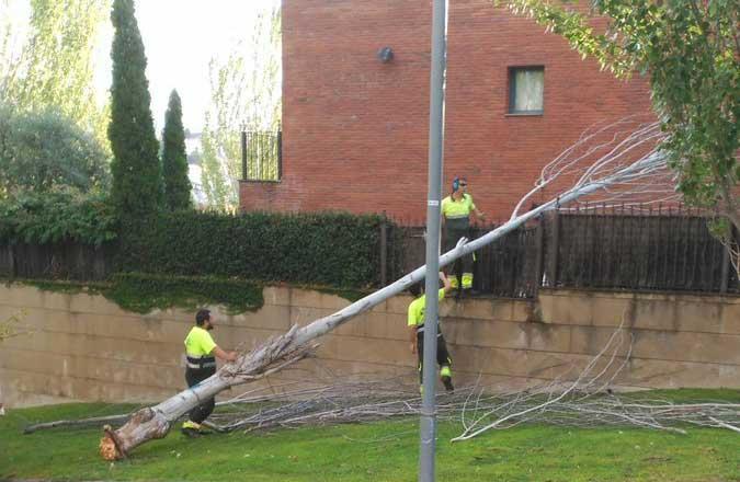 Operarios de Tiana trabajando para arreglar los desperfectos de la tormenta. Foto: Ajt. de Tiana