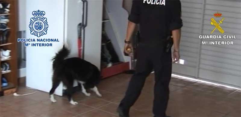 Resultat d'imatges de arrestados en montornes