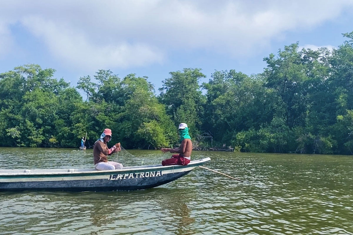 canoa la patrona