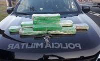 Mulher acaba presa com drogas em Ônibus na chegada a Curitiba