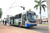 Prefeitura de Palmas diz que aniversário da cidade terá linha especial de ônibus