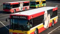 Disney: ônibus ganham nova identidade visual