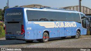 Viação Aguia Branca adquire quatro novos ônibus da Busscar
