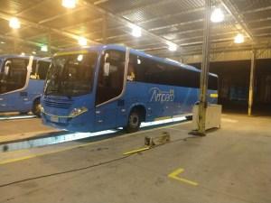 Viação Amparo adquire novos ônibus Busscar