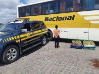 Polícia prende mulher com 44kg de drogas em ônibus da Viação Nacional