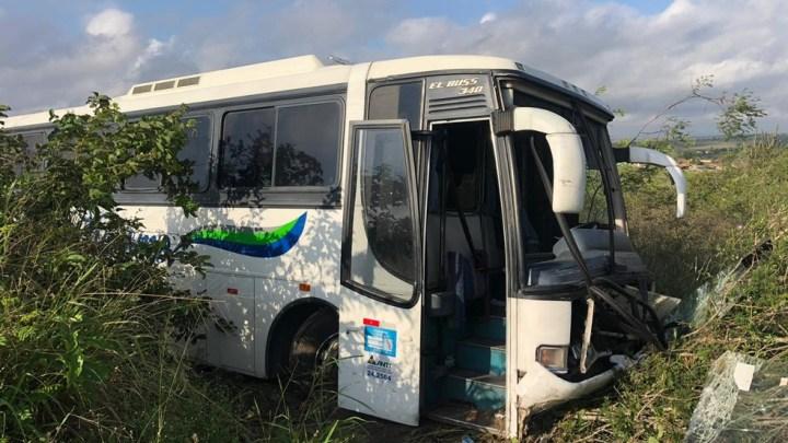 PB: Ônibus rodoviário sai da pista após colidir com cavalo na BR-230