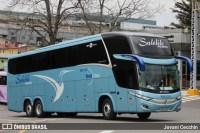 Expresso Satélite Norte renova com 22 novos ônibus