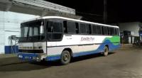PA: Polícia flagra ônibus com 18 suspeitos de invadir e desmatar área em Anapu