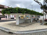 Ponto de ônibus em Salvador ganha jardim suspenso