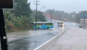 ES: Ônibus do Transcol perde o controle e sai da pista na Rodovia Norte Sul