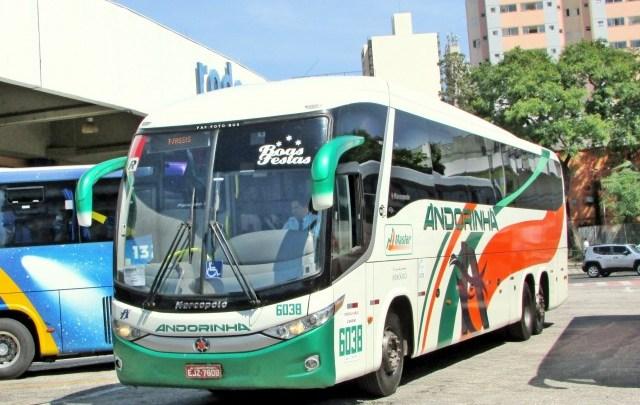 SP: Acidente com ônibus da Andorinha deixa 4 feridos na SP-225