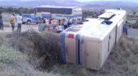 BA: Ônibus da Novo Horizonte tomba na Chapada Diamantina