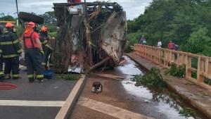 SP: Acidente com ônibus deixa cinco mortos no município de Parisi neste domingo
