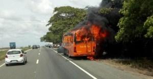 PB: Ônibus da Viação Rio Tinto pega fogo na BR-230