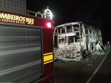 MS: Ônibus pega fogo e acaba destruído nesta madrugada de quarta-feira na BR-262
