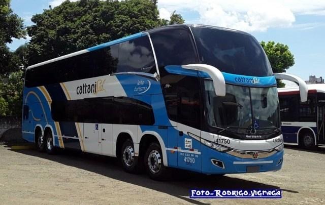 Cattani Sul adquire novos ônibus neste início de ano